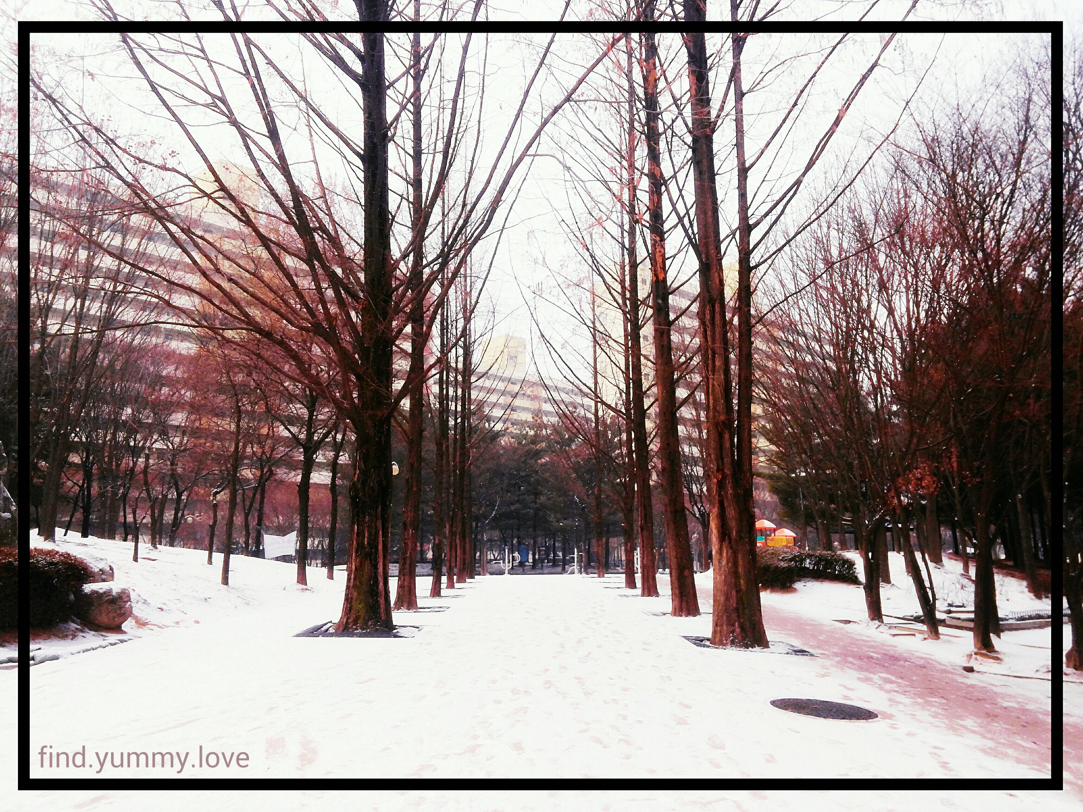 snowSL1